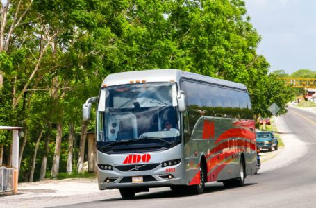 Selecting the Bus to Travel in Mexico
