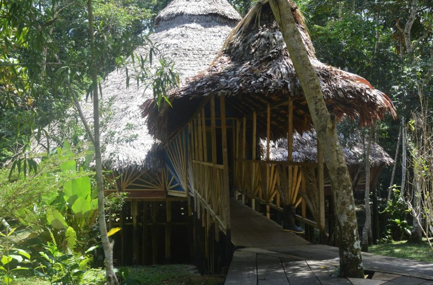 Top 10 things you need to know before you try ayahuasca retreat